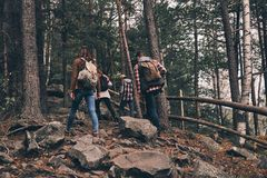 Best hobby ever. Full length rear view of young people in warm c. Lothing moving up while hiking together in the woods Royalty Free Stock Image