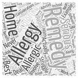 Best Home Remedies word cloud concept  background Stock Photography
