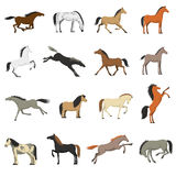 Best Horse Breeds Pictures Icons Set Stock Photo
