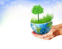 Best Internet and Environmental energy concept Royalty Free Stock Photo