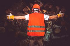 The Best Lumber Worker Royalty Free Stock Photography