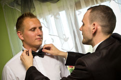 Best man dressing groom. In black bow ties before wedding Royalty Free Stock Photos