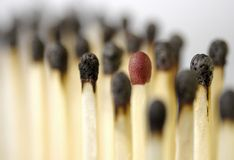 Best match. Burnt matches with an intact one Stock Photos