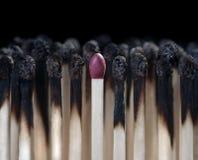 Best match on black Stock Image