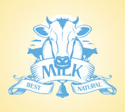 Best milk design. Royalty Free Stock Photography