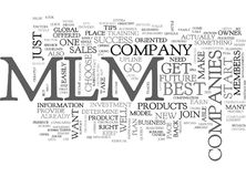 Best Mlm Companies Tips For Your Success Word Cloud. BEST MLM COMPANIES TIPS FOR YOUR SUCCESS TEXT WORD CLOUD CONCEPT Royalty Free Stock Photos