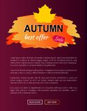 Best Offer Autumn Sale -35 Advert Promo Poster. Best offer autumn sale -35 advetr promo poster with label and place for text, web page design with informative Stock Photos