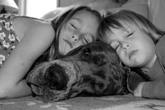 Best pals forever. Brother and sister relaxing on their warm, 8 month old great dane...on a cold rainy day Royalty Free Stock Photos