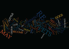 For The Best Pets Look To The Unusual Text Background  Word Cloud Concept Royalty Free Stock Image