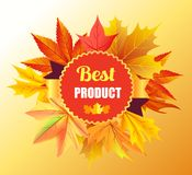 Best Product Award Stamp Design with Maple Leaves. Isolated on background with autumn foliage bouquet vector illustration of reward certificate Stock Photos