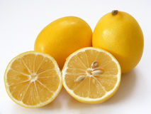 Best quality fresh lemon pictures for salads and special sauces.  Royalty Free Stock Image