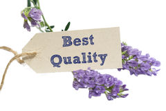 Best Quality. Word written on a Looking card with flower royalty free stock image