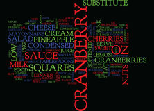 Best Recipes Cranberry Salad Squares Word Cloud Concept Royalty Free Stock Image