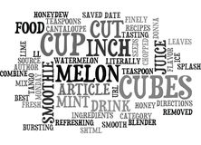 Best Recipes Melon Mint Splash Smoothie Word Cloud Royalty Free Stock Images
