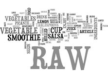 Best Recipes Raw Vegetable Smoothieword Cloud Royalty Free Stock Photos