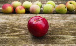 The best red apple separated from others Royalty Free Stock Photos