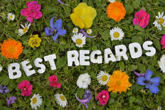 Best regards flower meadow letter. Best regards Summer text on flower meadow letter stock photography