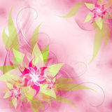 Best Romantic Flower Background Stock Image