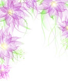 Best Romantic Flower Background Stock Images