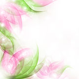 Best Romantic Flower Background Royalty Free Stock Photo