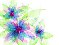 Best Romantic Flower Background Stock Photos