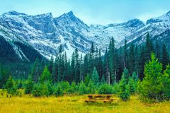 Best seat in the house. Picnic table below rockies, Kananaskis country Stock Image