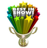 Best in Show Trophy Award Top Performer Winner Prize Stock Photos