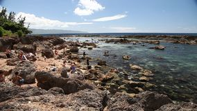 Best snorkeling Oahu. Oahu,Hawaii - August 26,2016:landscape of Sharks Cove, a small rocky bay side of Pupukea Beach Park. Sharks Cove is second best snorkeling stock video footage