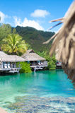 Best travel destination. Vertical shot of bungalows over turquoise water Royalty Free Stock Images
