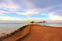 Beach hurghada royalty free stock photo