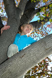 Best View. Happy girl up in a tree. Laughing child who is happy to be up above it all and seeing the best view. Kids in Trees Stock Photo
