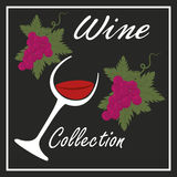 the best wine collection Royalty Free Stock Images