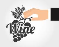 Best wine design Stock Images