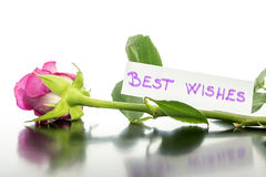 Best wishes Stock Images