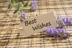 Best Wishes. Message written on a Looking Label on mat stock photography