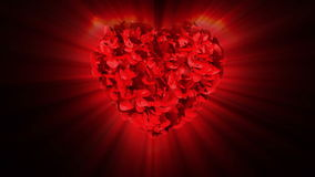 Best Wishes and rose heart exploding stock footage