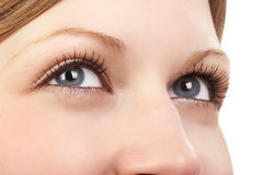 The best woman eyes Royalty Free Stock Photos