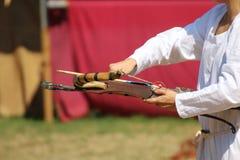 Besta de madeira medieval na exposição Foto de Stock