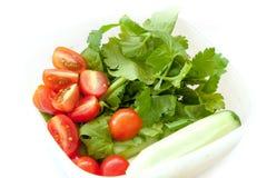 Bestandteil von thailändischem leckerem und von Salat Lizenzfreies Stockbild
