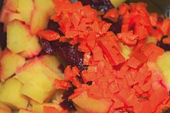 Bestandteile des Gemüsesalats lizenzfreies stockbild