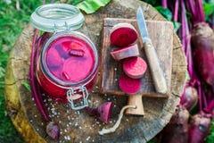 Bestandteile für in Büchsen konservierte Rote-Bete-Wurzeln im Glas Stockfotografie