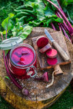 Bestandteile für in Büchsen konservierte Rote-Bete-Wurzeln im Sommer Lizenzfreie Stockbilder