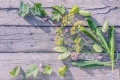 Bestandteile für das Kochen von in Essig eingelegten Gurken auf alten hölzernen Brettern Lizenzfreie Stockfotografie