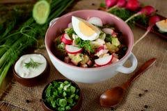 Bestandteile für das Vorbereiten des kalten Suppe okroshka Stockfotos