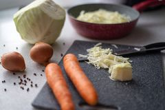 Bestandteile für gedämpften Kohl, Zwiebeln, Karotten, kochend, Gemüse lizenzfreie stockfotografie