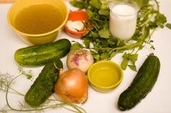 Bestandteile für Gurke-Suppe Lizenzfreies Stockfoto