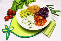 Bestandteile für Mischungssalat von Lachsen und von Gemüse Lizenzfreie Stockbilder