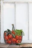 Bestandteile für selbst gemachte Salsa gegen altes Fenster Stockbilder