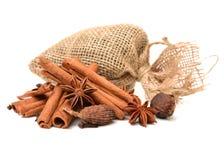 Bestandteile für Tee mit Gewürzen Lizenzfreie Stockfotografie
