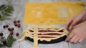 Bestandteile f?r den backenden Kuchen angef?llt mit frischer Kirschtorte Weibliche vorbereitende Kirschtorte stock video footage